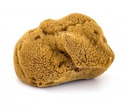 Морска гъба за лице Hard Head (4.5-5 см) - неизбелена, ZoyaBG ®,  1 бр